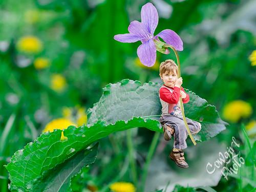 Isaiah in Miniature