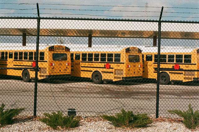 School Buses - Pentax Lens