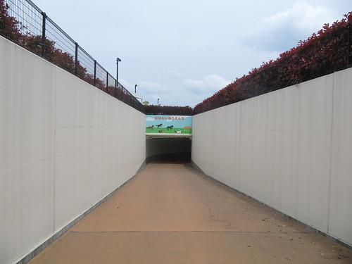 中京競馬場の公園に向かう地下道