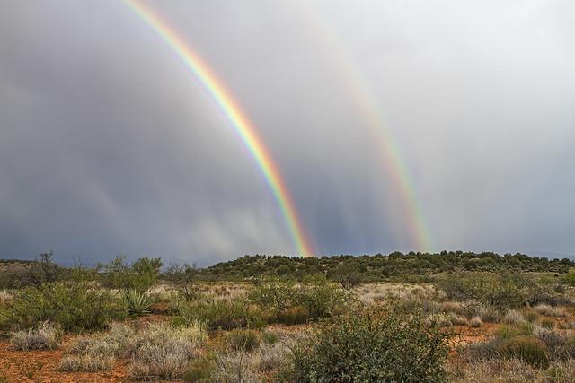 Rainbow 15_7d1__020516