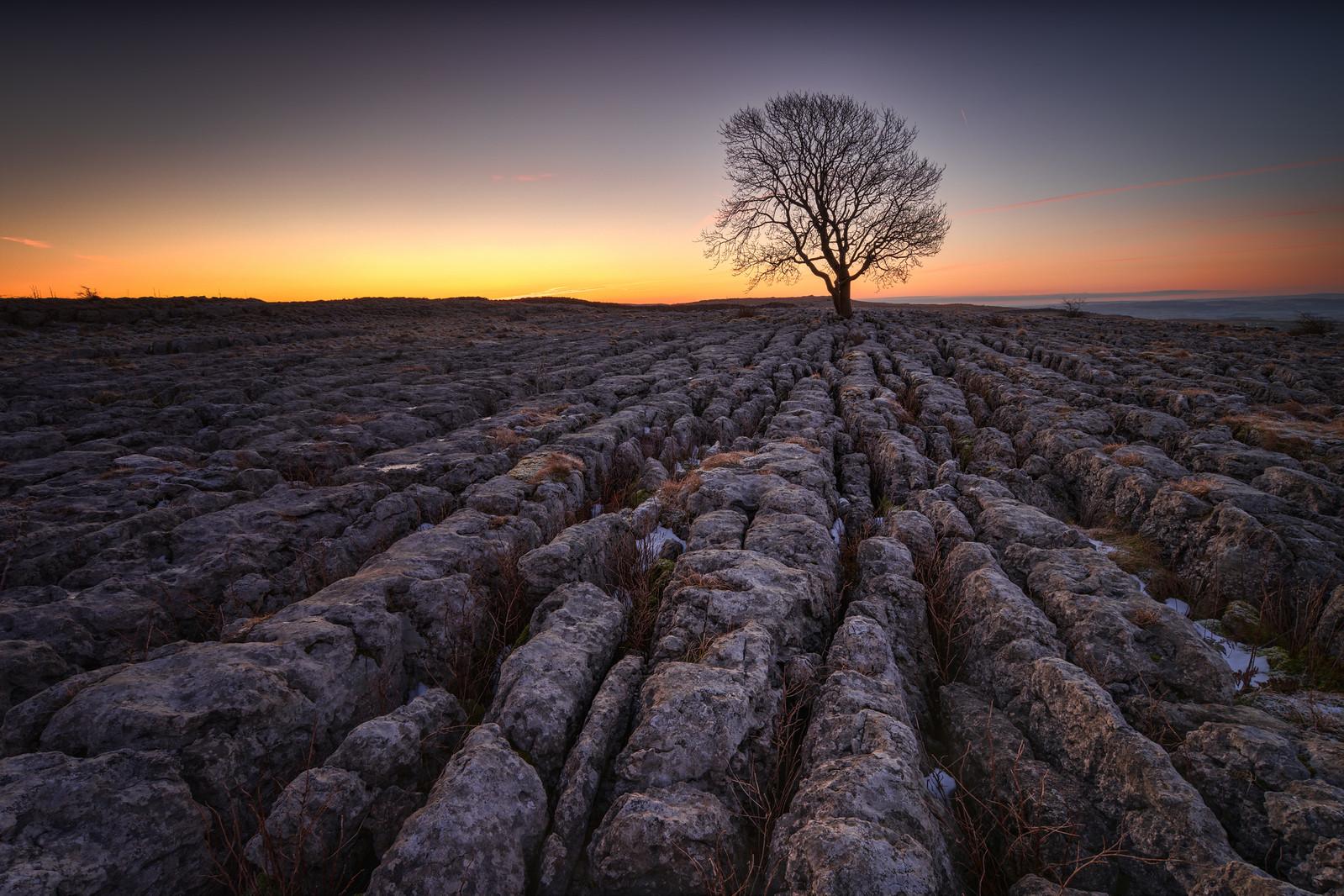 Limestone plateau, Malhamdale. Credit Andi Campbell-Jones