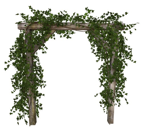 Botanical Wooden Arbor With Ivy