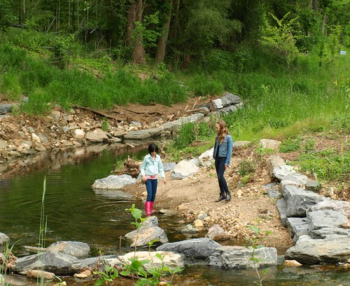 Kids enjoying a restored stream in Montgomery County.
