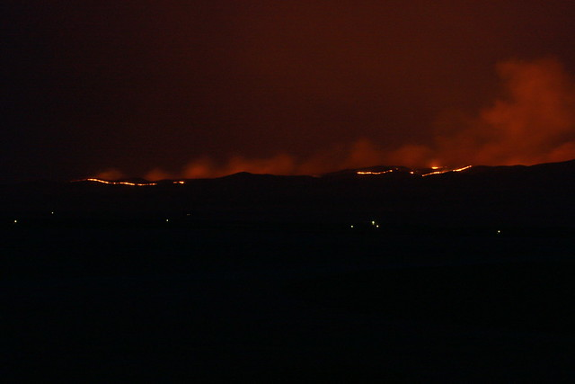IMG_7567 - wildfire