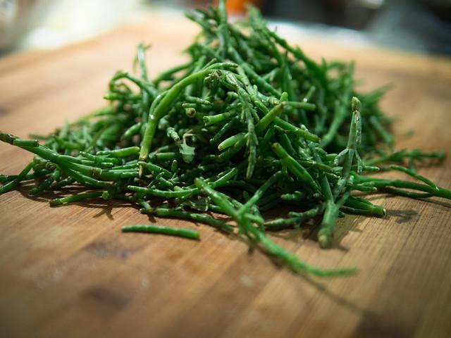 how to grow sea asparagus