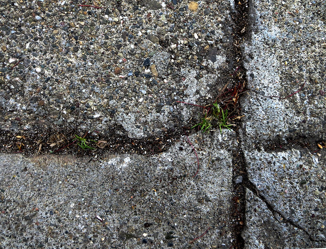life in the cracks (2013)