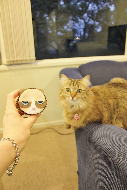 Grumpy Cat Cupcakes Tutorial