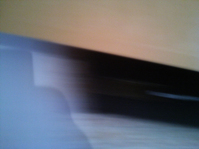 PIC_2219