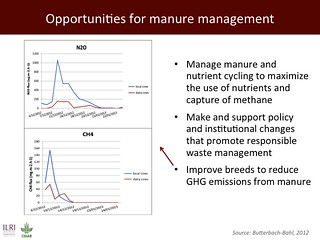 Opportunities for manure management