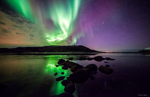 Northern Lights: Nov 6 2013 Different colours, at Roksøyfjord, Sortland, Norway
