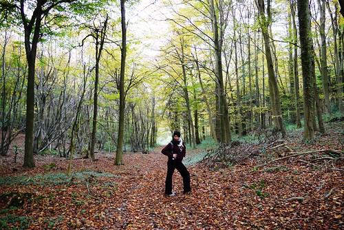 Strike a pose, Beechen Wood