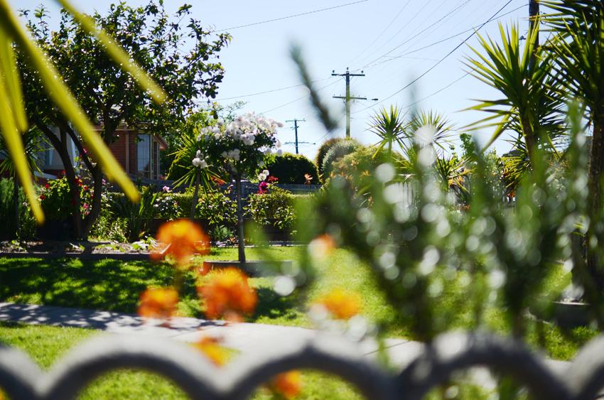 golden-garden a
