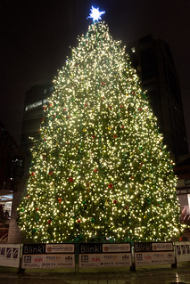 Image of Quincy Market. christmas tree boston night lights quincymarket 2013