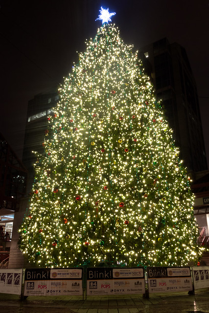 Quincy Market Christmas Tree