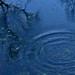 16122013-DSC_0163 by Ender[-_-]