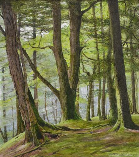 森 水彩 c