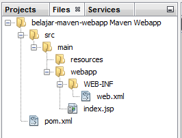 stuktur folder WEB