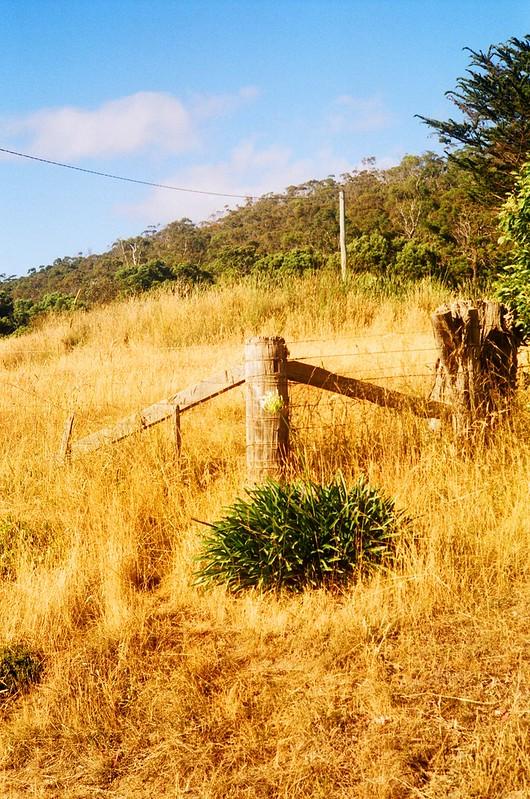 Bruny Island - Tasmania