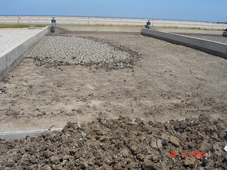 Lit de séchage (Maroc) - Sludge drying bed (Morocco)