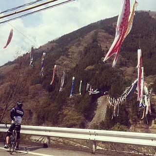 松姫2014 小菅村