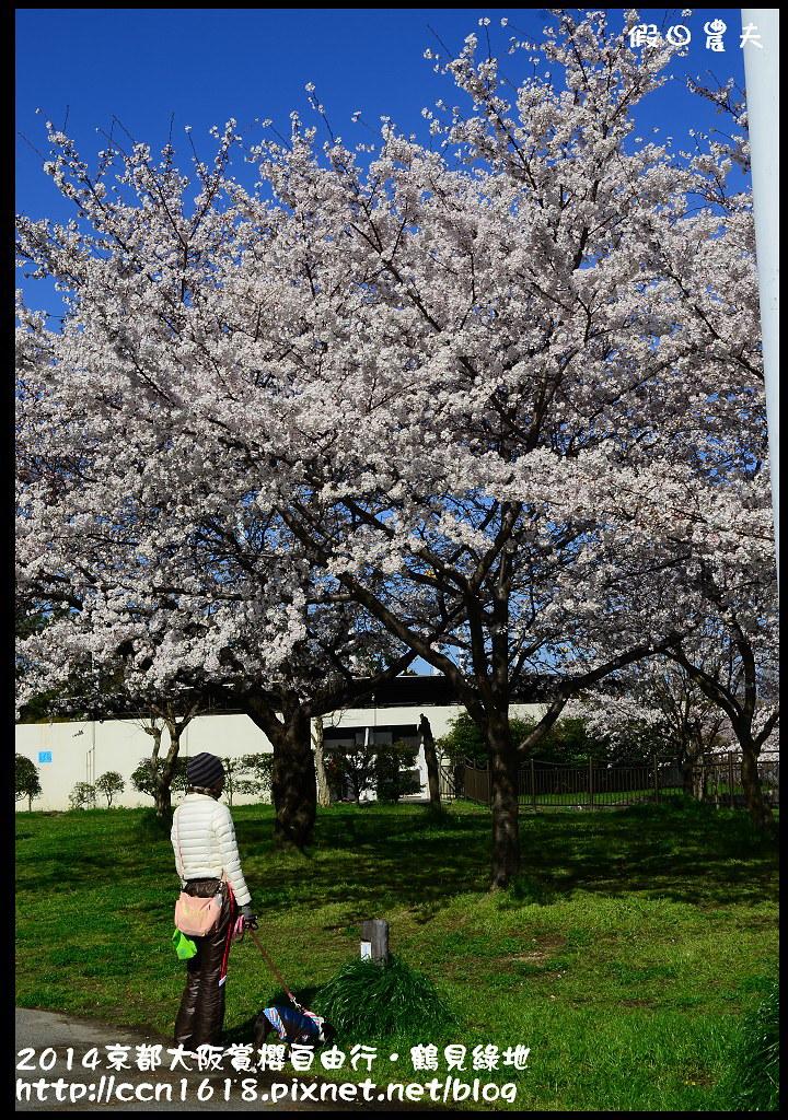 2014京都大阪賞櫻自由行.鶴見綠地DSC_1204