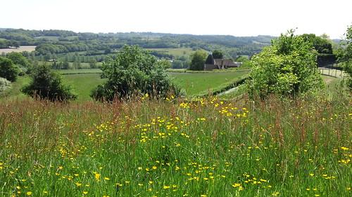 Picnic field Burwash