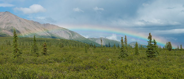 Rainbow in Denali