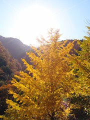 Shiromaru Dam @ Ootama Walking Trail