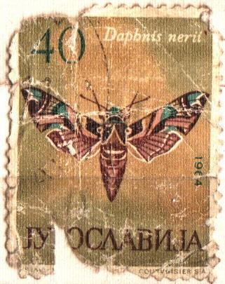 vintage postage stamp, postmark, mark, postmark, postmark, postmark, stamp, philately, mail, retro, vintage, 20 century, vintage, 20 century,