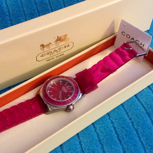 Andee stainless steel jelly strap watch