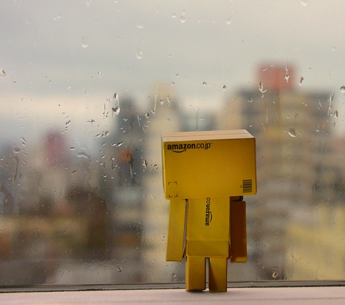 Danbo Rainy Day