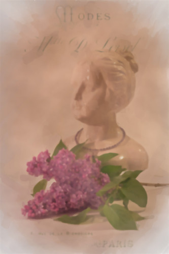 Lavender Lilac French BustAKVIS-WCOLOR-IMG_1127-4LL by Rustic Pixel