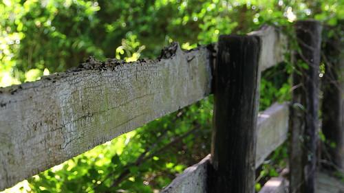 fence bahamas rocksound eleuthra bahamas2013