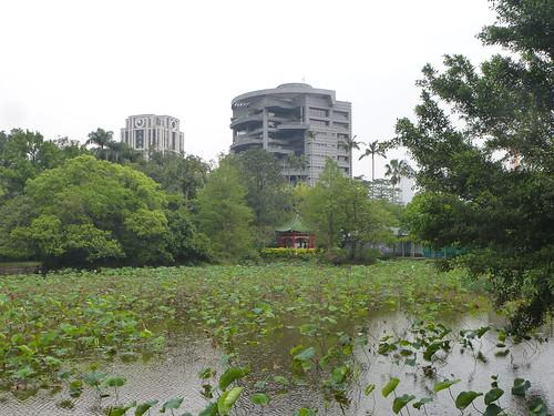 TW14-Taipei-Jardin botanique (15)