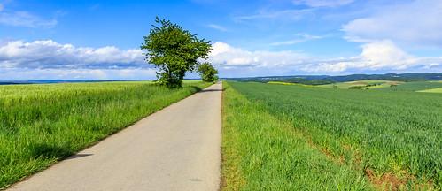 deutschland rheinlandpfalz welschbillig