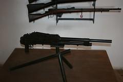 assault rifle(1.0), weapon(1.0), shotgun(1.0), rifle(1.0), machine gun(1.0), firearm(1.0), gun(1.0), gun barrel(1.0), sniper rifle(1.0),
