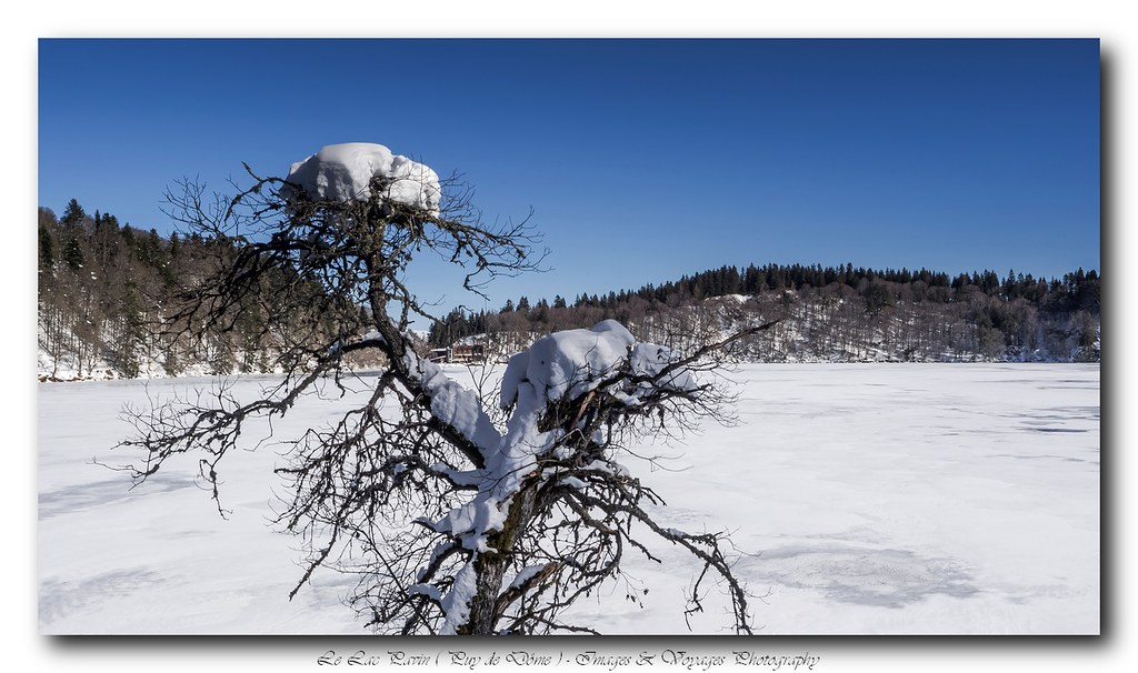 C'est bientôt l'hiver ... 16342141149_b36d904646_b