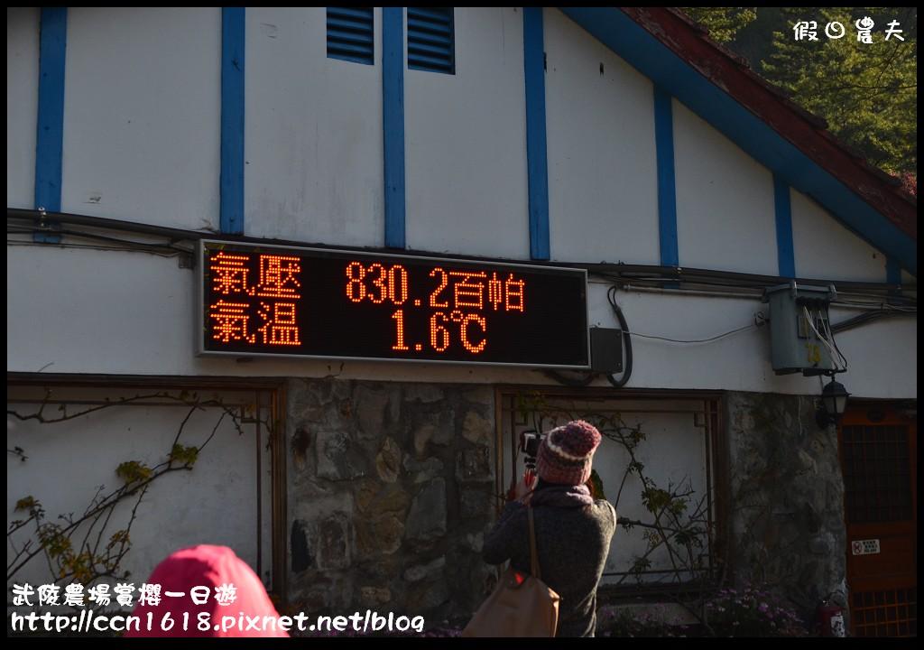 武陵農場賞櫻一日遊DSC_5482