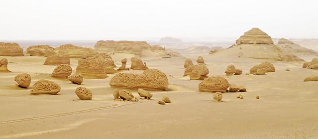 Wadi2-32