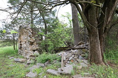 Ruins at Happy Creek
