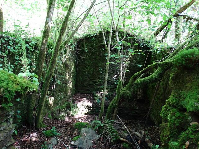Ruinas Molino en el SM.14 Ruta do Mendo