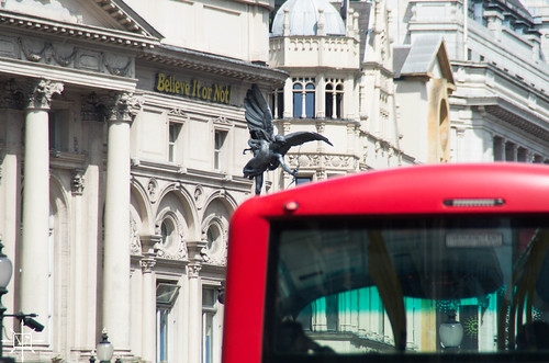 Eros and Red Bus