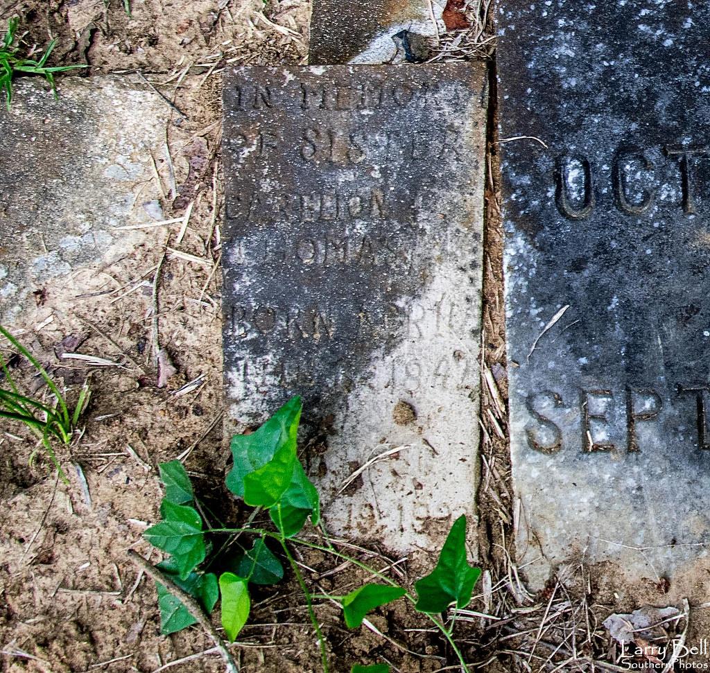 Alabama wilcox county catherine - County Cemetery Us Unitedstates Alabama Catherine Wilcox Shaw Larrybell Larebel Larebell Southernphotosoutlookcom