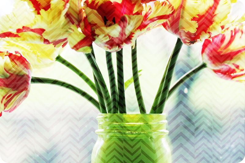 {april} these days | tulips in mason jar