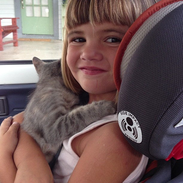 On our way to Pepples' first vet visit. Bea insisted on holding her. She's such a good little kitty mama.