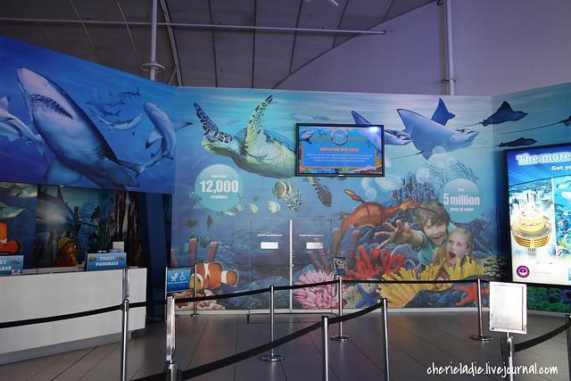 Sydney aquarium entrance and ticketing booth