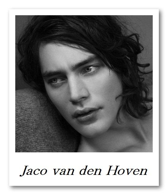 Image_Jaco van den Hoven