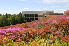 UW-Superior View of Swenson Hall from Student Union Green Roof 4b