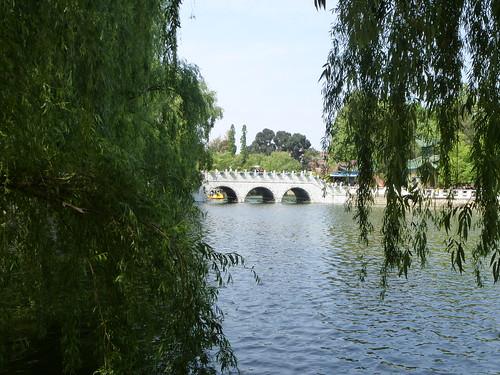 Yunnan13-Kunming-Nord-Parc (9)