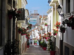 Estepona (Málaga)